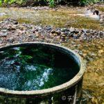 チェンダオの川沿いにある土管温泉に行った話【チェンマイ近郊】