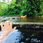 【チェンマイ近郊】チェンダオの川沿いにある土管温泉に行ってみた話