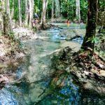【秘境】クラビ近郊の森の中、天然の滝湯クロントム温泉とエメラルドプールで遊んだ話【穴場】